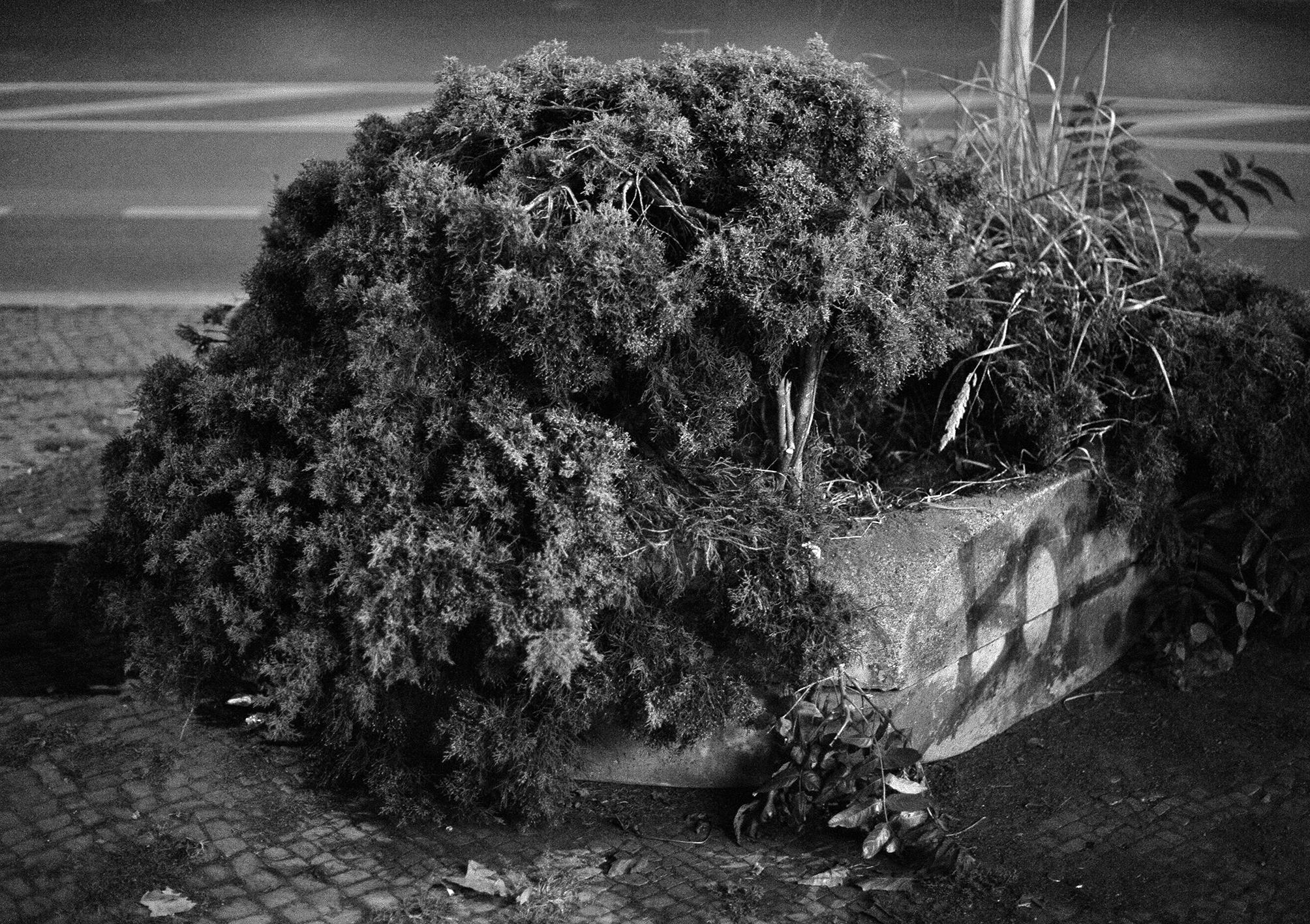 Ossian Fraser Der freie Platz (photo series), 2016